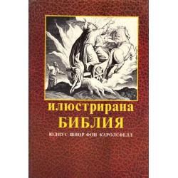 Илюстрирана Библия с 240 илюстрации, гравюри на дърво от Юлиус Шнор фон Каролсфелд